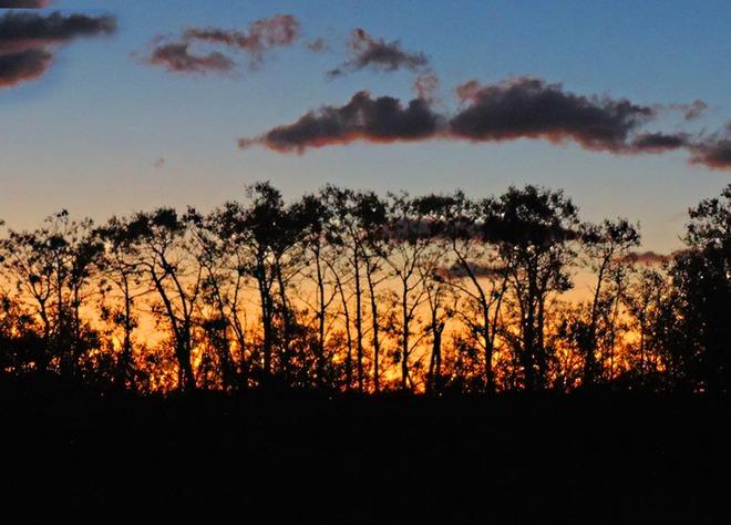 Aspens at Sunrise Lethbridge, Alberta Canada