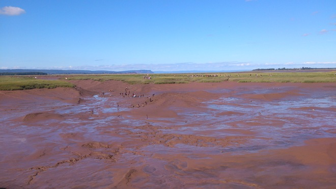 World Record for Mudsliding in Wolfville Wolfville, Nova Scotia Canada
