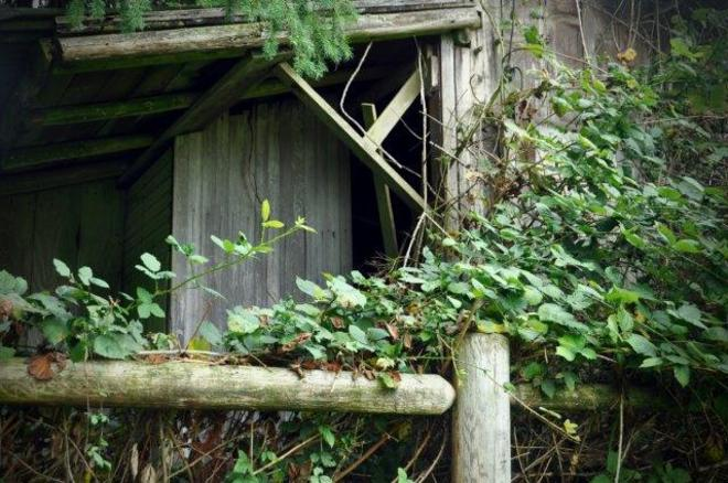 Back of a shed Erin, Ontario Canada