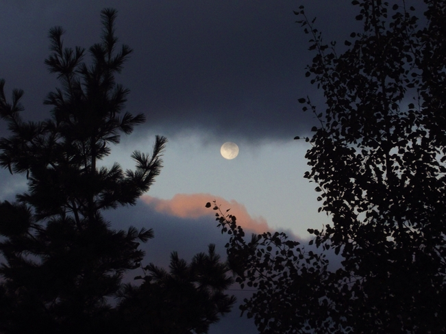 AM Moon Cottlesville, Newfoundland and Labrador Canada