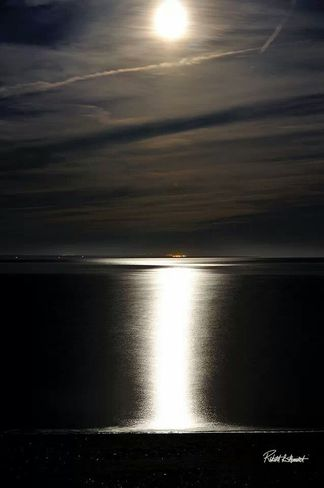 Harvest Moon Over The Bay Of Fundy Pennfield, New Brunswick Canada
