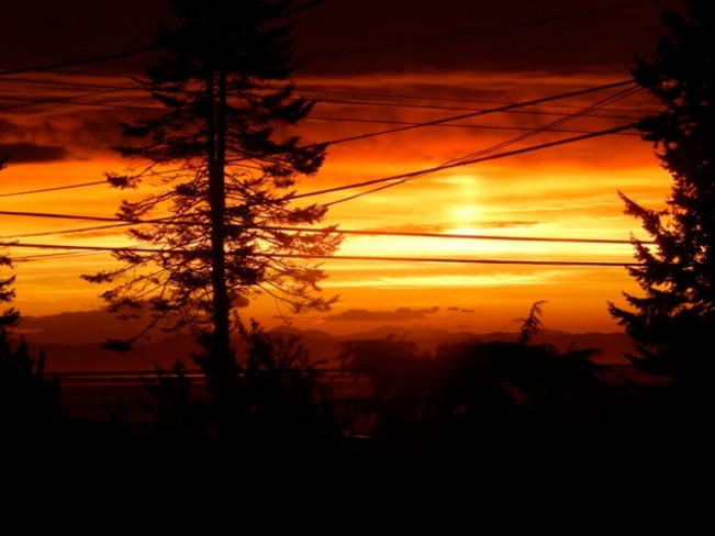 morning sky full of fire Courtenay, British Columbia Canada