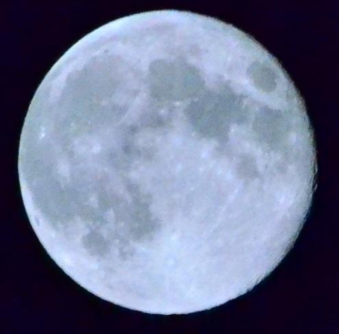 harvist moon Brantford, Ontario Canada