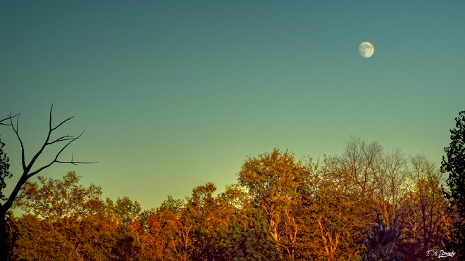 Moonrise at Sunset Smiths Falls, Ontario Canada