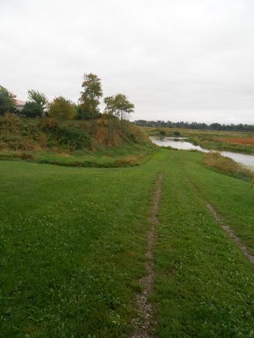 The Green Grass Road Canning, Nova Scotia Canada