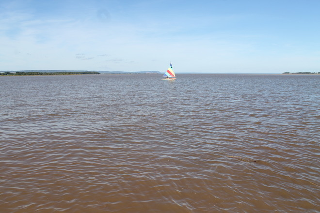 Last Sail of the Summer-Minas Basin Wolfville, Nova Scotia Canada