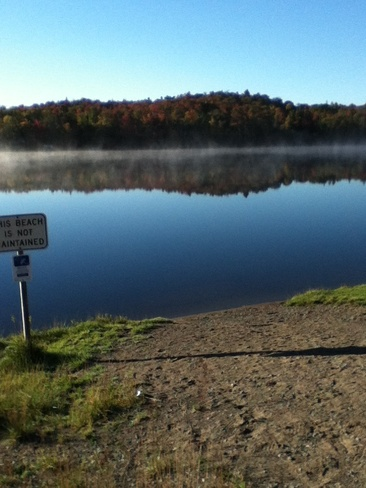 Morning Mist II Heyden, Ontario Canada