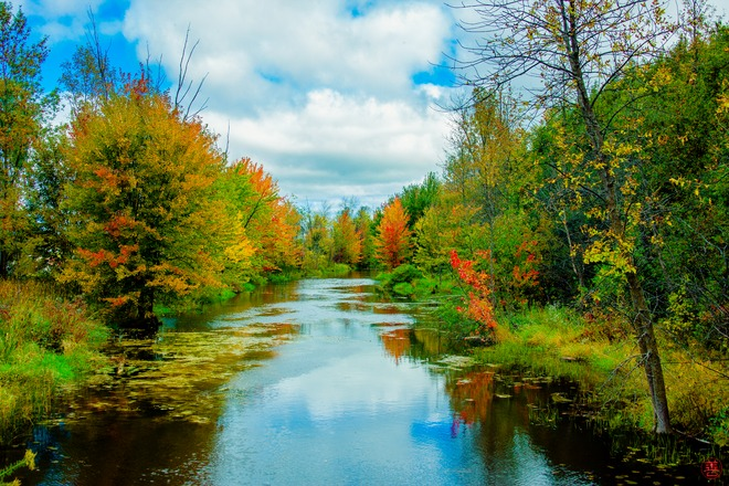 Stream in early Fall Peterborough, Ontario Canada