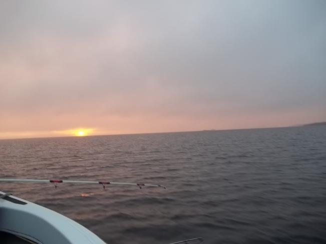 Great Evening for Fishing Birchy Bay, Newfoundland and Labrador Canada