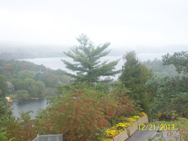 Wet Dreary Day and Fall Colours as seen from the Lions Looksout Huntsville, Ontario Canada