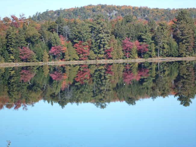Reflections of Lake Horned E.L Elliot Lake, Ontario Canada