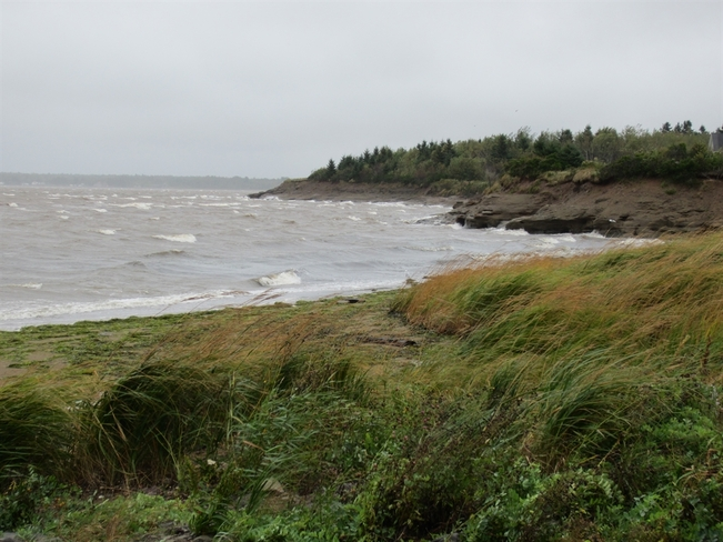 Windy at Lovers lane Cocagne, New Brunswick Canada