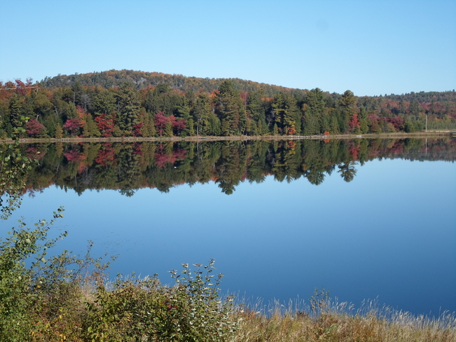 Reflections of Fall Colours on Lake Elliot Lake, Ontario Canada