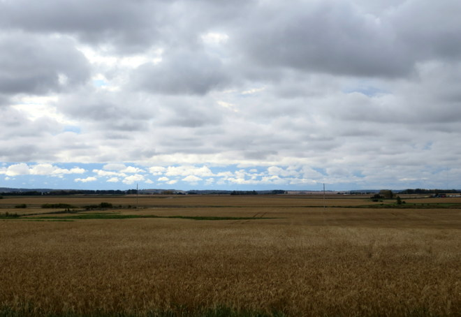 Endless Landscapes Brandon, Manitoba Canada