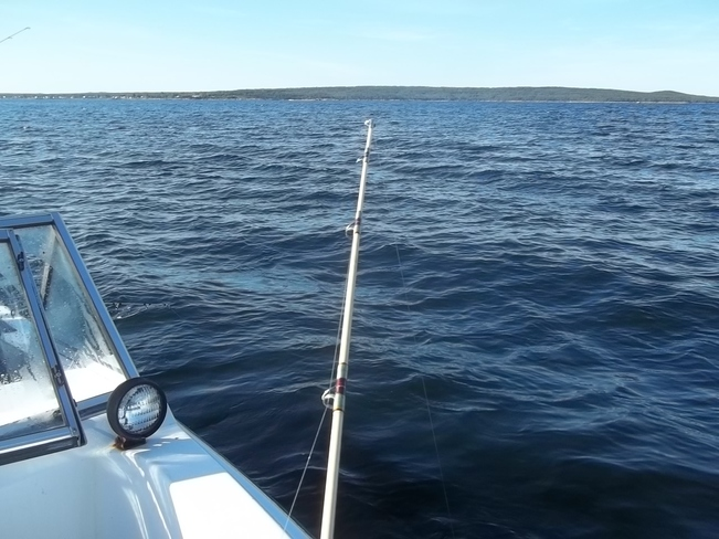 Great Day For Fishing Birchy Bay, Newfoundland and Labrador Canada
