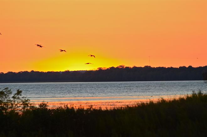 Sunrise on West Lake Wellington Beach, Ontario Canada