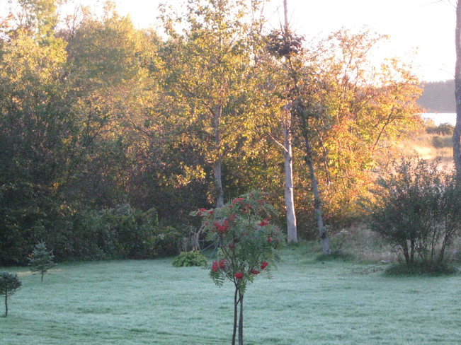 early morning frost Antigonish, Nova Scotia Canada