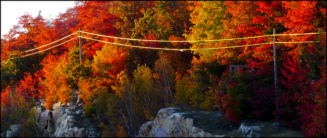 Golden wire on 108. Elliot Lake, Ontario Canada