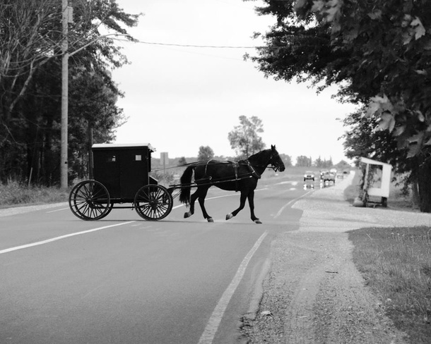 Mennonite Country Millbank, Ontario Canada