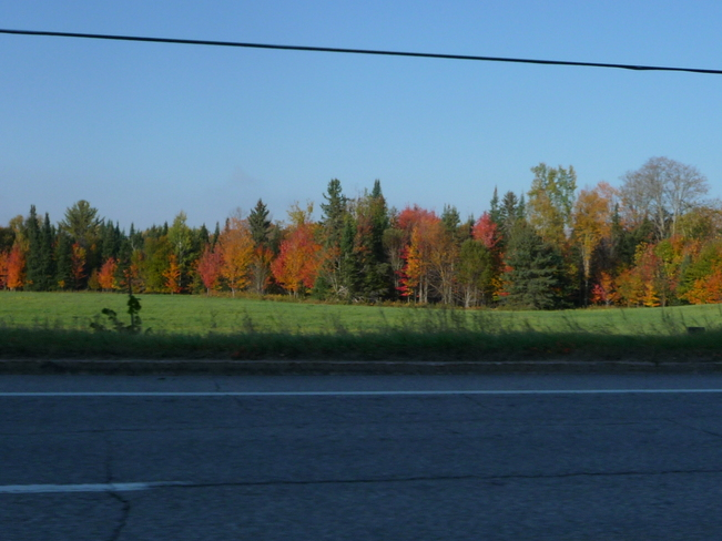 Fall Day Gracefield, Quebec Canada