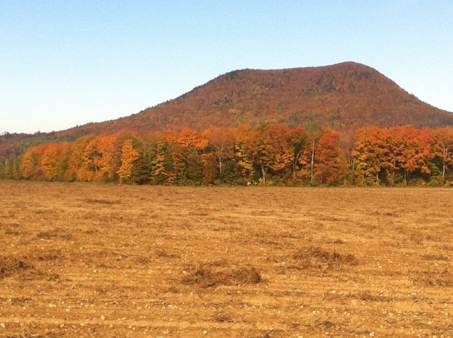 harvest time in moose mountain Beechwood, New Brunswick Canada
