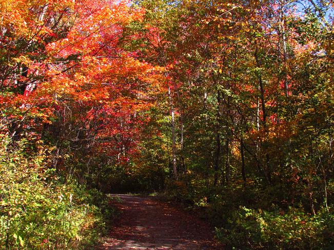 trails North Bay, Ontario Canada