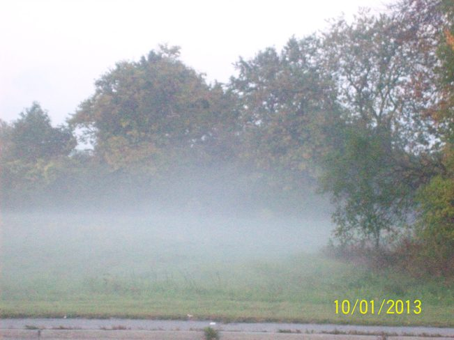 Morning Mist out on a Field off Sidney street Belleville, Ontario Canada