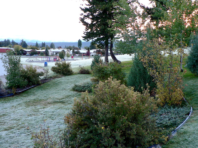 FROSTY START TO DAY Cranbrook, British Columbia Canada