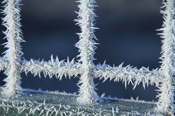5a. Rime On Fences
