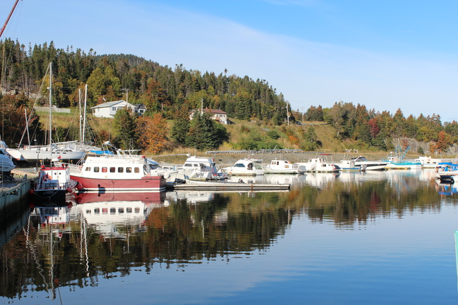 Beautiful Fall Day Corner Brook, Newfoundland and Labrador Canada