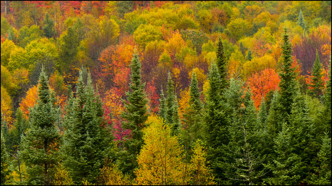The colours are still nice behind No Frills. Elliot Lake, Ontario Canada