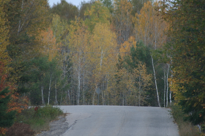 Fire Tower Road Elliot Lake, Ontario Canada