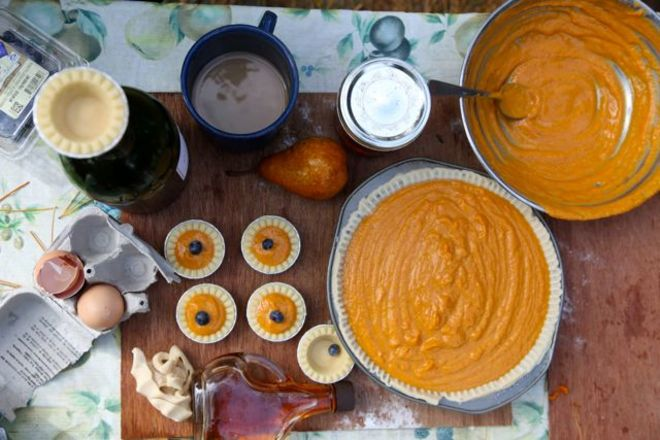 Pumpkin Pie Production Naiscoutaing 17A, Ontario Canada