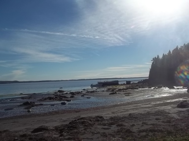 Beautiful Afternoon At The Cabin Birchy Bay, Newfoundland and Labrador Canada