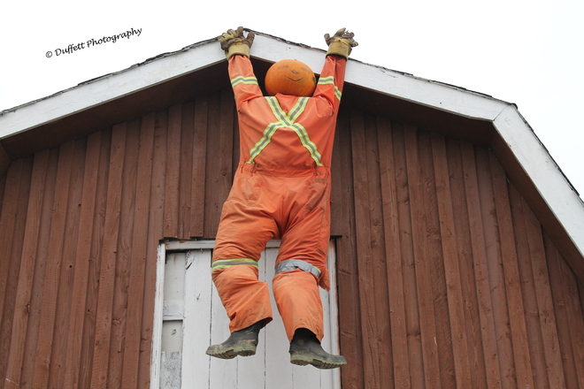 Just hanging out (Halloween) St. John's, Newfoundland and Labrador Canada