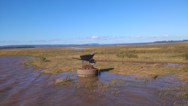 Wolfville Wheelbarrow Race is called off due to High Tide Wolfville, Nova Scotia Canada