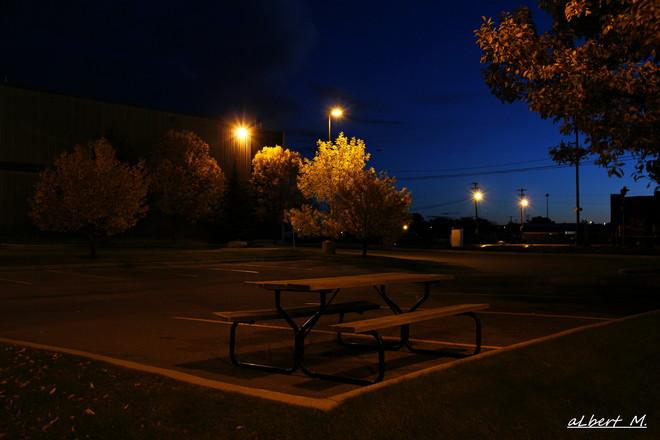 Autumn morning bench Calgary, Alberta Canada