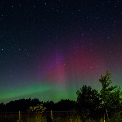 Northern Lights in the South Port Rowan, Ontario Canada