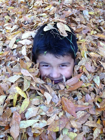 playing in the leaves Russell, Manitoba Canada