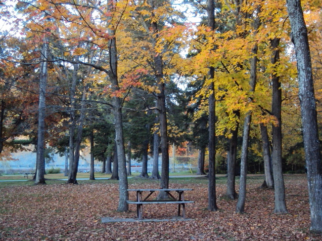 great picnic area off the highway Elliot Lake, Ontario Canada