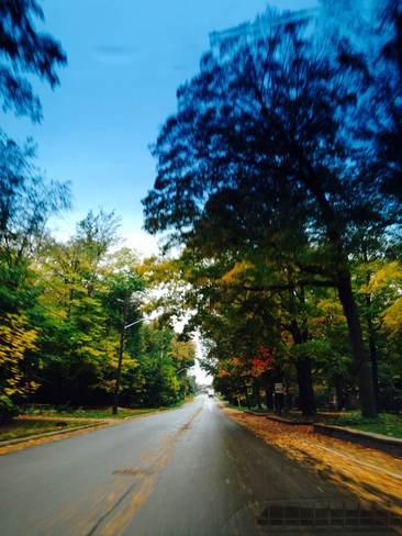 Path to Fall Elmira, Ontario Canada