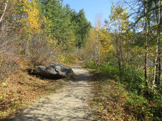 Hiking trail Timmins, Ontario Canada