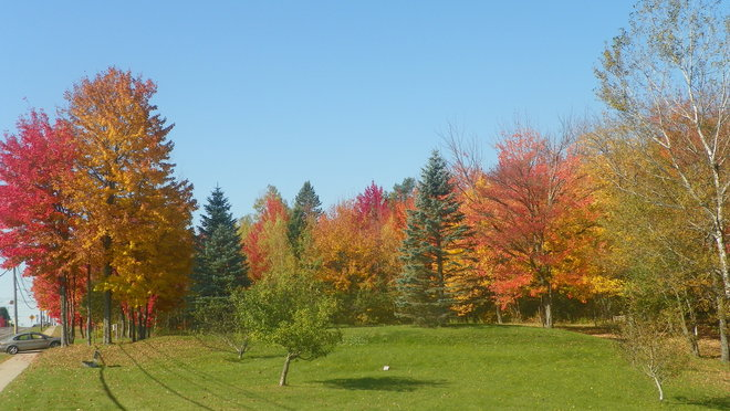 Lovely Fall Day in Moncton Moncton, New Brunswick Canada