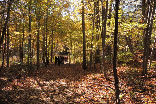 Fall, best time of the year for hiking Toronto, Ontario Canada