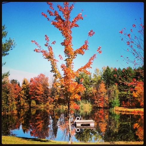 Fall again Drummondville, Quebec Canada