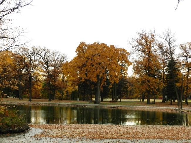 By The Pond Winnipeg, Manitoba Canada