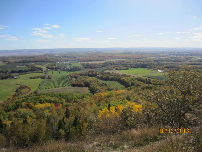 fall colours on look out point in Blomidon ,ns