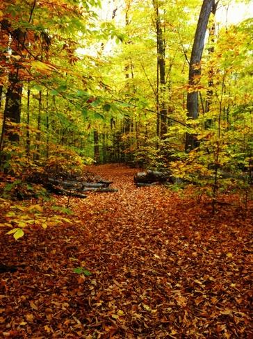 The Grove Arnprior, Ontario Canada