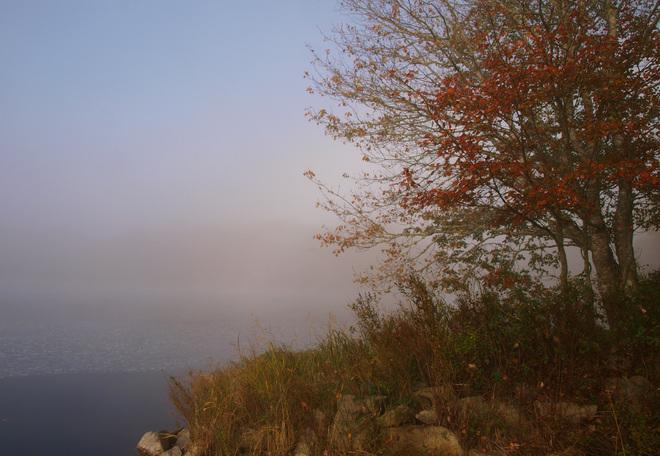 morning fog on the Tusket River Tusket, Nova Scotia Canada