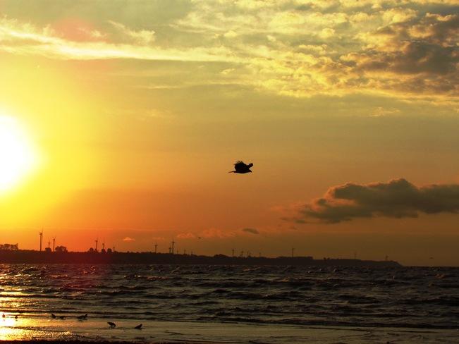 Sunrise Flight Port Burwell, Ontario Canada